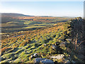 SD9438 : Towards Smithy Clough by Des Blenkinsopp