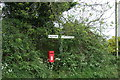 TG0201 : Elizabeth II postbox on Hall Moor Road, Hingham by JThomas