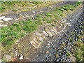 NO2204 : Old road surface, Lomond Hills by Bill Kasman