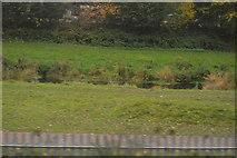 ST2425 : River Tone by N Chadwick