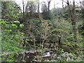 SJ1059 : Rocky riverside, Lady Bagot's Drive by Eirian Evans