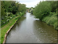 SK2526 : Trent and Mersey Canal (looking south) by David Dixon