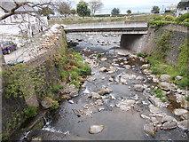 SS7249 : Glen Lyn Gorge - water flowing into River Lyn by Betty Longbottom