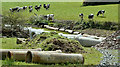 J4675 : Drainage pipes, Kiltonga, Newtownards (May 2017) by Albert Bridge