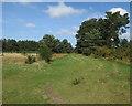TL7982 : Path near Mayday Farm by Hugh Venables