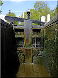 SO8688 : In Greensforge Lock south of Swindon, Staffordshire by Roger  Kidd