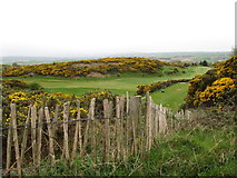 J4772 : Scrabo Golf Course from the vicinity of Scrabo Tower by Eric Jones