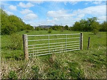NS3977 : Field gate at Kilmalid by Lairich Rig