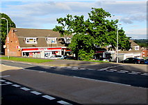 ST3091 : Larch Grove shops and tree, Malpas, Newport by Jaggery