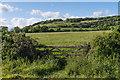 TQ1850 : Towards Box Hill by Ian Capper