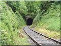 S6714 : Snow Hill Tunnel by Redmond O'Brien