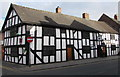SJ6452 : The Cheshire Cat, Nantwich by Jaggery