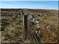 NS2786 : Fence and dry-stone wall by Lairich Rig