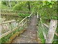 NO8069 : Footbridge at west end of Mill of Benholm dam by Stanley Howe