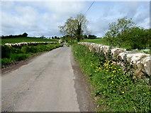 H4869 : Bloody Bridge, Edenderry Road by Kenneth  Allen