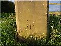 SJ9515 : OS benchmark - Teddesley Park, gatepost near Keeper's Pools by Richard Law