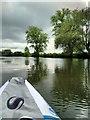 SU6087 : River Thames near Wallingford by PAUL FARMER