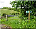 SY1589 : Public bridleway and permissive bridleway signpost, Trow, Devon by Jaggery