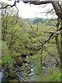 SH6842 : Afon Goedol in Coed Cymerau by Christine Johnstone