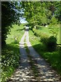 SO5860 : Quiet country road near Hatfield by Philip Halling