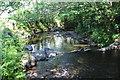 ST1588 : Weir, Nant yr Aber, Caerphilly by M J Roscoe