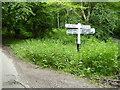 TQ4030 : Signpost on Birchgrove Lane by Shazz