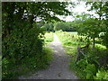 TQ3929 : Bridleway from Birchgrove Road heads for Birchgrove Wood by Shazz