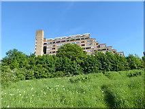 TQ3473 : Dawson's Heights seen from Dawson's Hill by Marathon