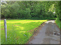 SU8933 : Green at Stoatley Hollow by Hugh Craddock