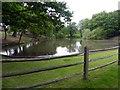 SU9572 : Prince Consort Pond by Graham Hogg