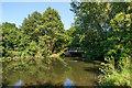 TQ1457 : River Mole by Ian Capper