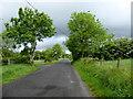 H5673 : Dark skies along Slievebane Road by Kenneth  Allen