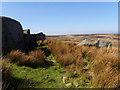 SE1344 : Rock Outcrop, Burley Moor by Mick Garratt