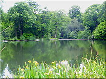 TQ2787 : The lake at Kenwood House by Rod Allday