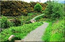 NO1706 : Footbridge on Glenvale path, Lomond Hills by Bill Kasman