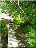 SD9927 : Steps and boardwalk on the Foster Mill Dams footpath by Humphrey Bolton