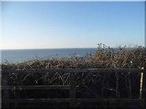 TG2142 : The sea from Cromer beach car park by David Howard