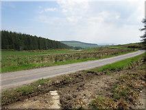 NH6271 : Road, Novar Estate by Euan Nelson