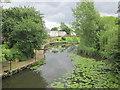SP1453 : River Avon, Binton Bridges Welford-on-Avon by Roy Hughes