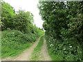 SE9559 : Bridleway to Tibthorpe by Jonathan Thacker