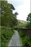 NY3404 : Bridleway towards Loughrigg by DS Pugh