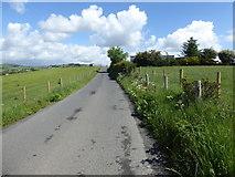 H5575 : Striff Lane, Streefe Glebe by Kenneth  Allen