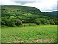 SO2925 : Nant Honddu / Vale of Ewyas by Christine Johnstone