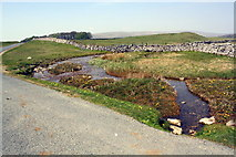 SD8965 : Malham Water east of Low Trenhouse by Roger Templeman