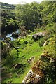 SX6479 : East Dart near Hartyland by Derek Harper