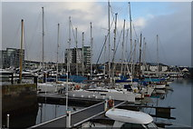 SX4854 : Marina, Sutton Harbour by N Chadwick