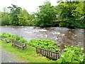 SD9278 : River Wharfe in spate by Oliver Dixon