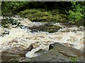 SE0656 : The River Wharfe at the Strid by Oliver Dixon