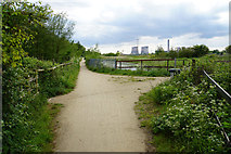 SJ5687 : The Transpennine Trail by the St Helens Canal by Bill Boaden
