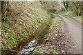 SX0168 : Camel Trail by Derek Harper